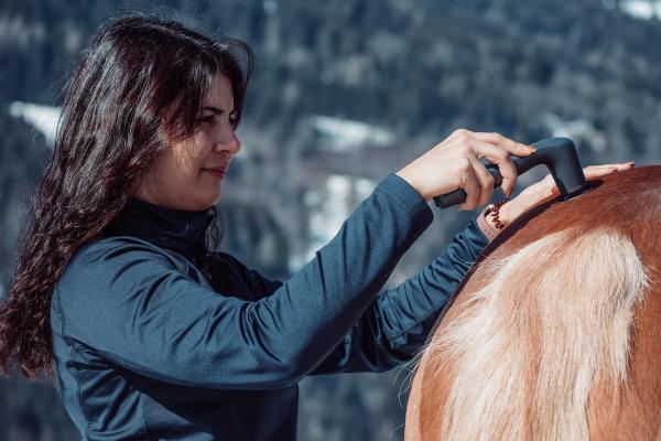 Das NOVAFON power im Einsatz an der Kruppe eines Pferdes