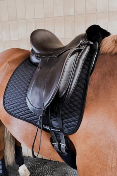 Vorderansicht Stübben Streamline Schabracka am Pferd unter einem Sattel