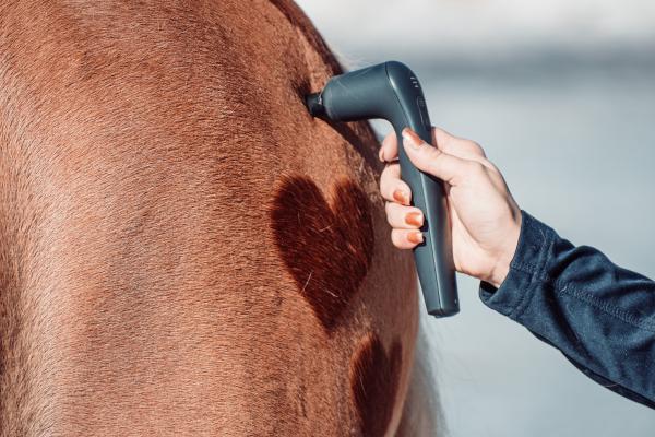 Das NOVAFON power an einem Pferde mit einem herzförmigen Schermuster