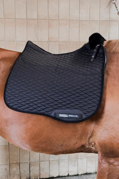 Stübben Streamline Schabracke in schwarz auf einem Pferderücken ohne Sattel