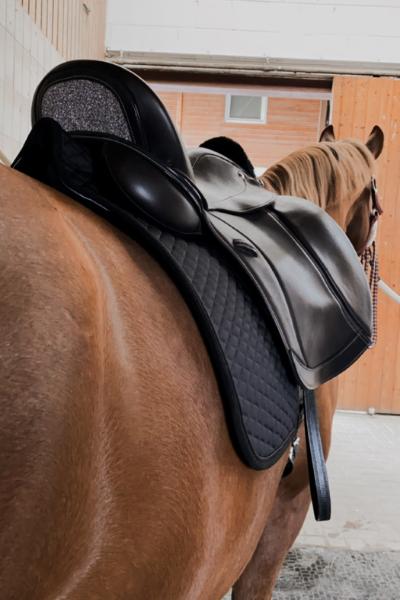 Streamline Stübben Schabracke Ansicht von hinten unter einem Sattel auf dem Pferderücken