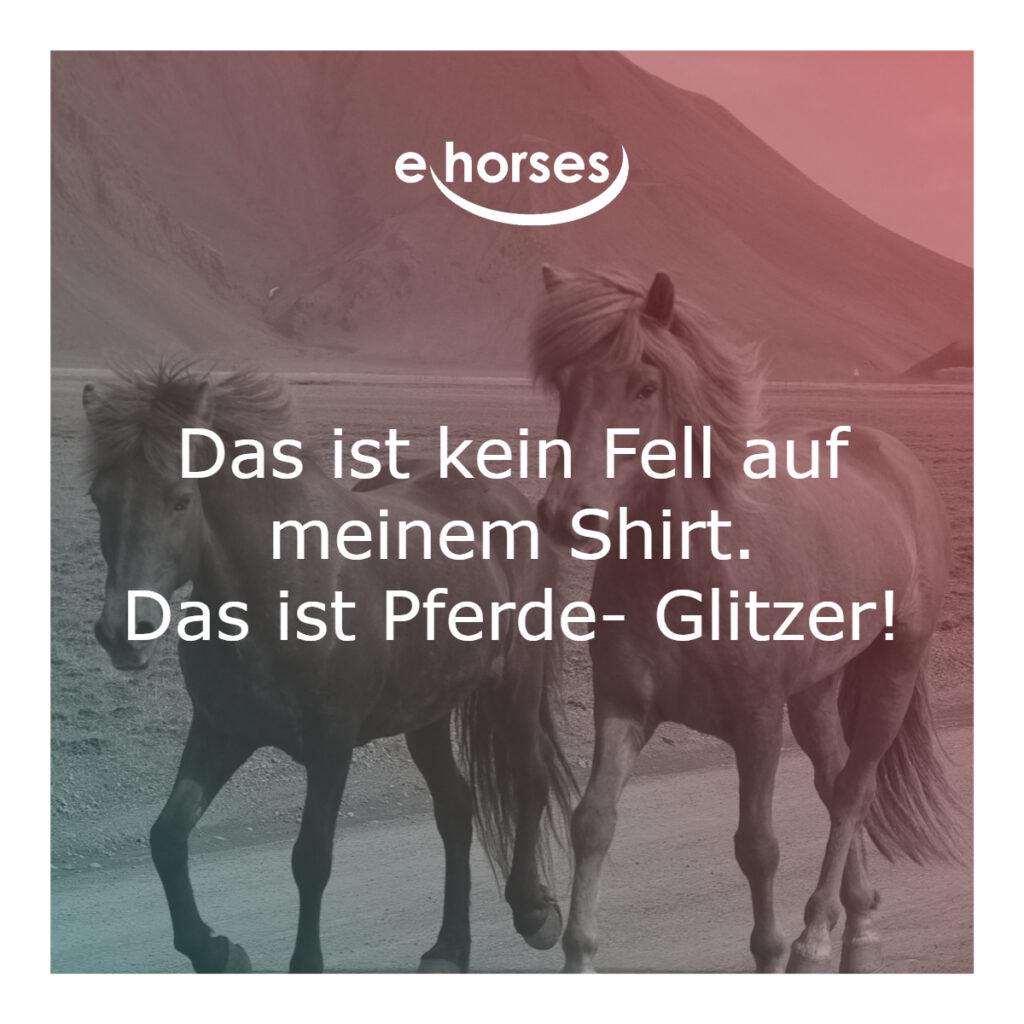 Pferdespruch Fell auf dem Shirt