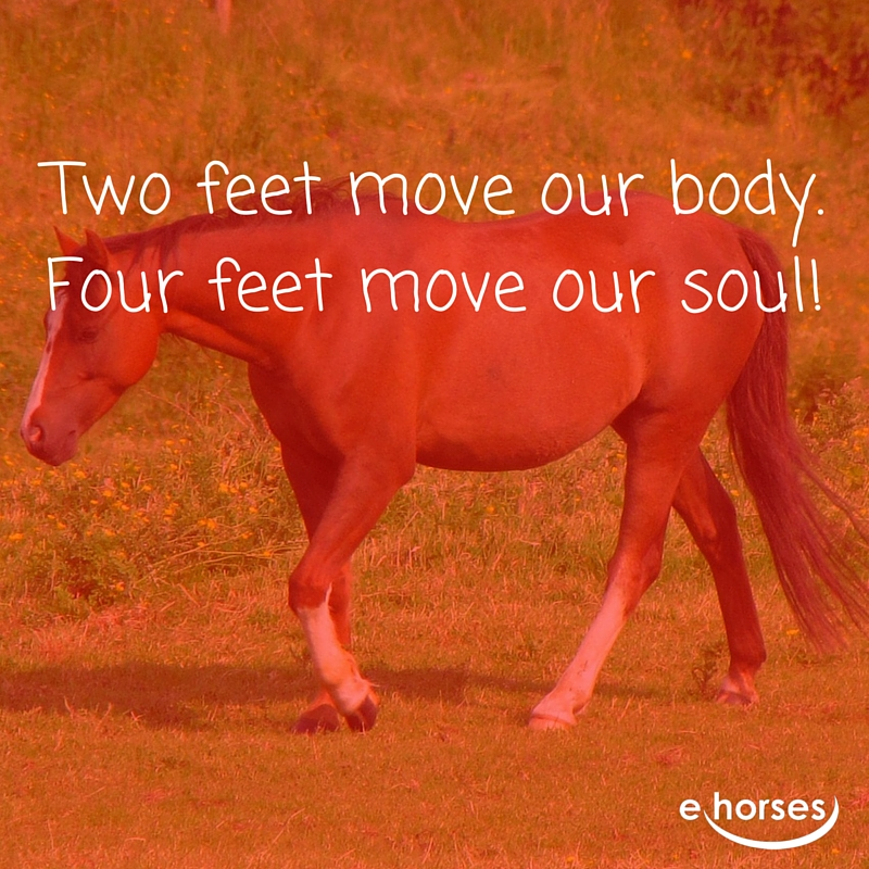 Pferdespruch two feet move body four the soul