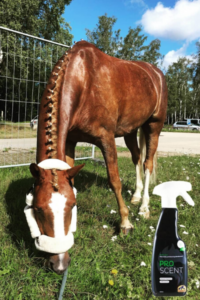 Produkttest Cavalor
