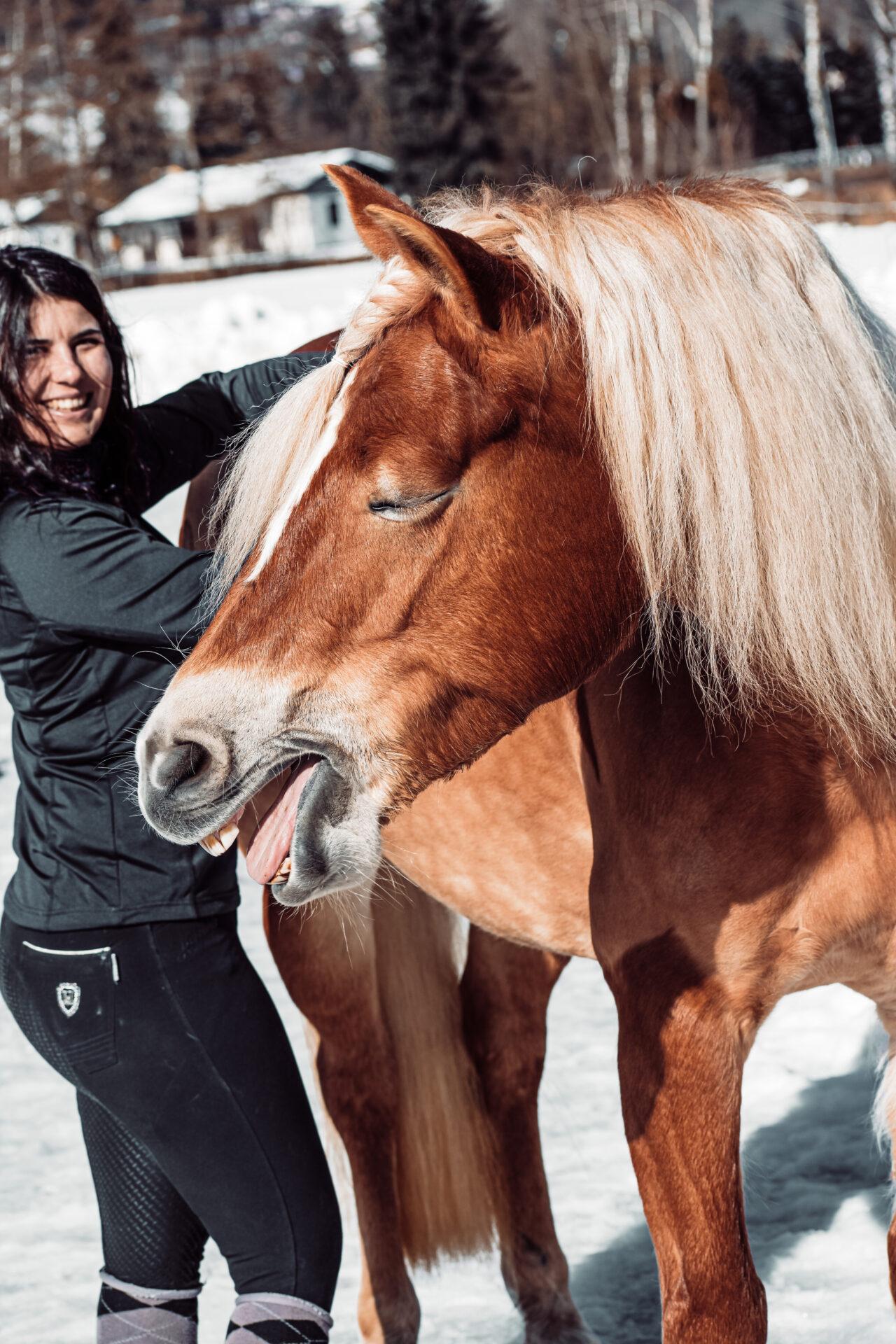Das Pferde genießt sichtlich die Behandlung mit dem NOVAFON power und gähnt