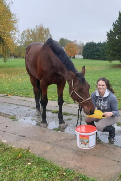 Produkttest-Deukavallo-Leinvital-Futter-Pferd