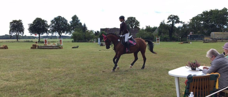 Ausrüstung für Reiter: Reiterin auf einem Pferd bei einem Turnier