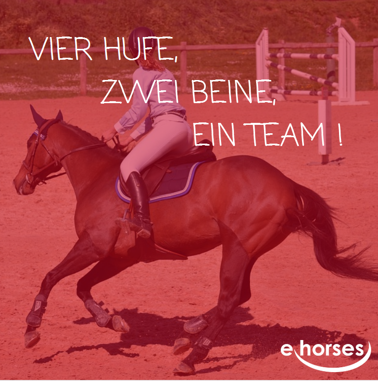 Pferdespruch ein Team