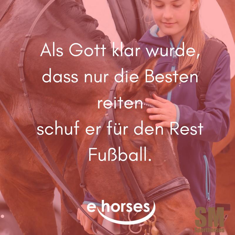 Pferdespruch die Besten reiten der Rest spielt Fußball