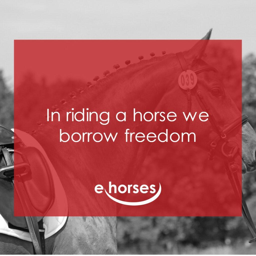 Pferdespruch in riding we boorw freedom