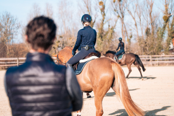 Headset Reiten: Zwei Pferde auf einem Platz
