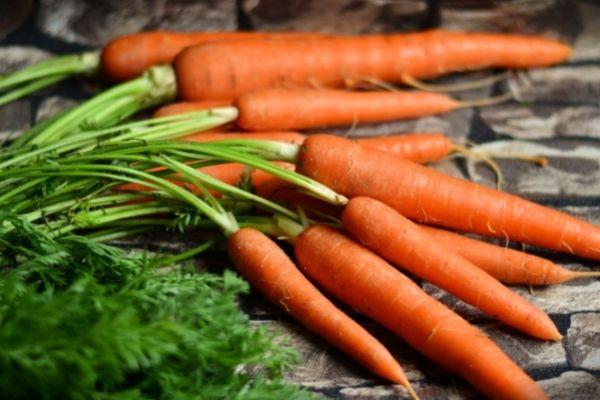 Obst und Gemüse für Pferde: Möhren für Pferde