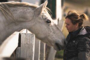 Pferd beugt sich einer Frau vor