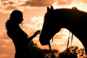 pferd-einschlaefern-frau-pferde-sonnenuntergang