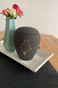 pferd-einschlaefern-urne-fuer-pferde