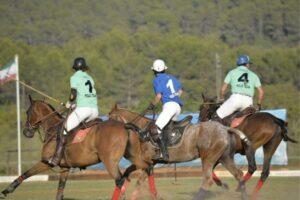 Pferdefrisuren Polo