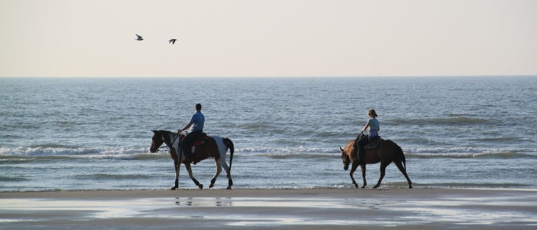 Urlaub mit Pferd: Pferde am Strand
