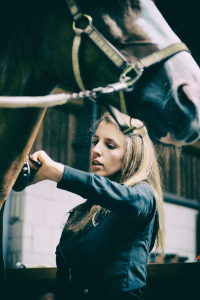 Pferdemassage mit Massagestriegel