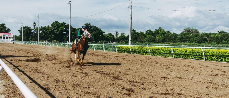 Reiter beim Pferdesport