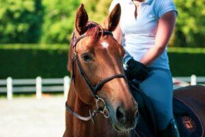 Reiterin auf einem Pferd