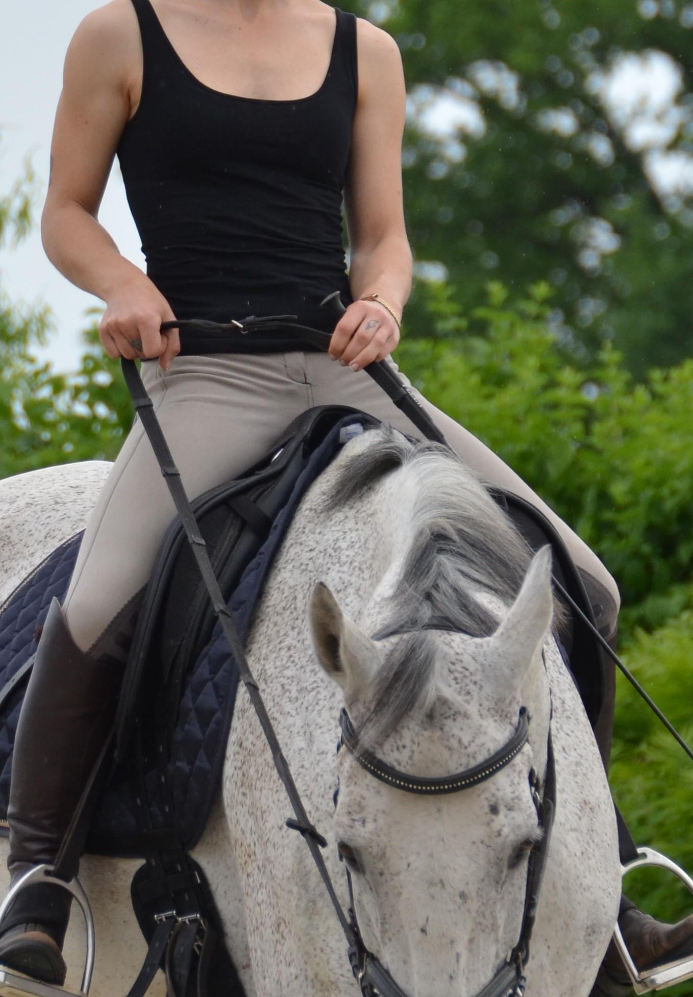 De richtige Handhaltung | Die Reiterhand